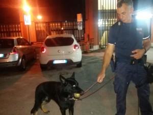 cane poliziotto yago